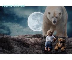 Cursuri Adobe Photoshop, After Effects, Premiere, Illustrator